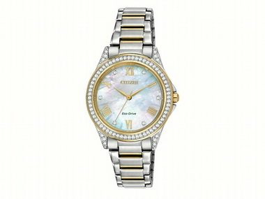 Ladies Two-tone Eco-Drive