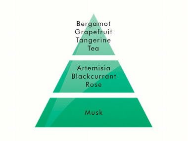 Delicate Tea 1l