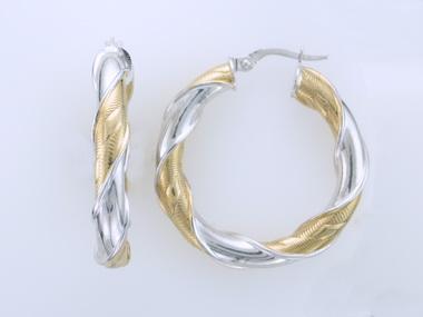 10KT Two Tone Earrings