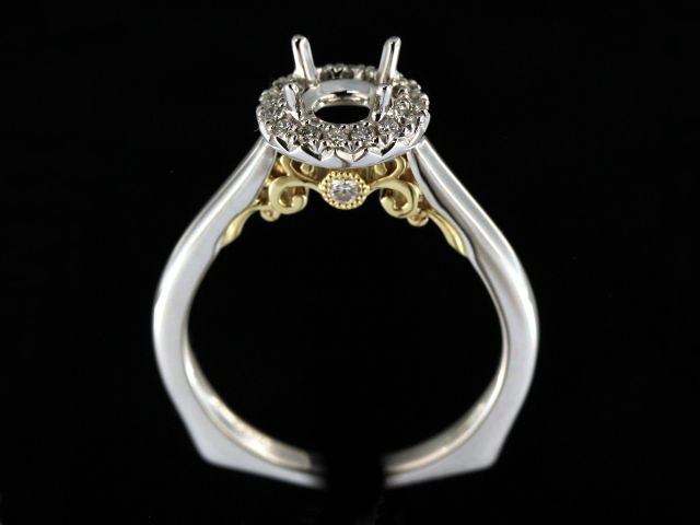 14KT Yellow & White Gold Mount