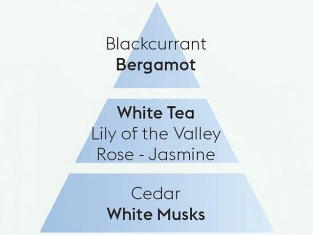 500 ml Pure White Tea