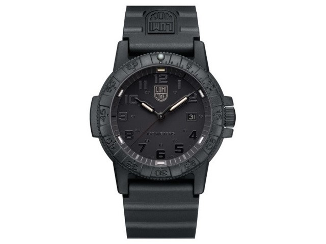 Leatherback Sea Turtle Black Out